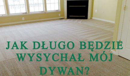 Jak długo wysycha dywan po praniu ekstrakcyjnym?